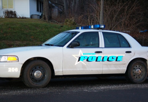 Bucksport Police Log: Stolen medications reported