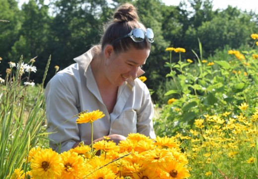 Florist's cutting garden a source of inspiration