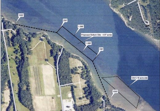 Taunton Bay oyster grower wants to shift a farm site