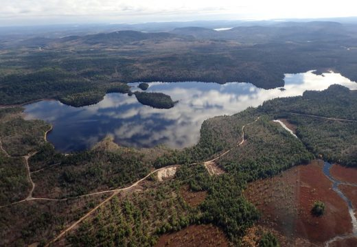 Conservation groups to purchase 17,881 acres