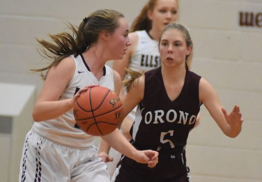 HIGH SCHOOL BASKETBALL TOURNAMENT PREVIEW: Eagles, Trojans, Mariners make up strong local girls' field