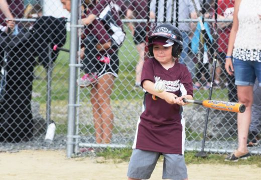 Lifetime moments, connections made at Challenger Little League Jamboree