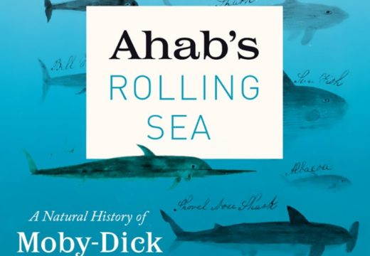"Book explores rich sea life in ""Moby-Dick"""
